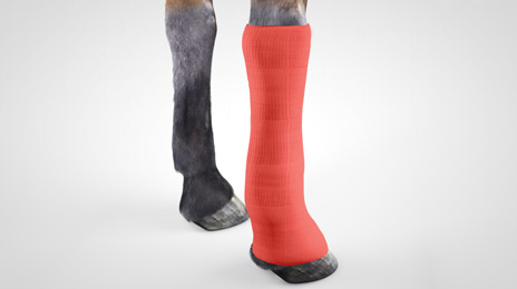 vet-horse-gel-dressing-6